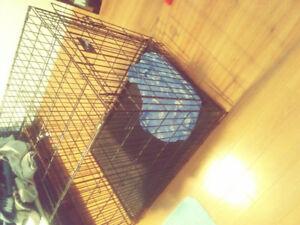 Cage pour chien à vendre