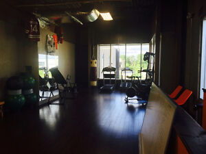 Personal training in a private gym Cambridge Kitchener Area image 2
