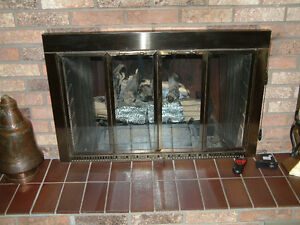 FIREPLACE DOORS FOR SALE