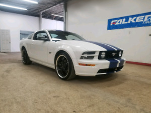 Mustang GT (may trade for truck or SUV)