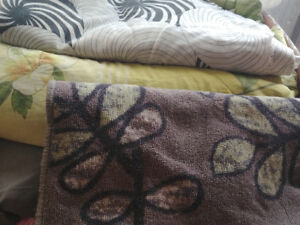 Free box of blankets, pillows, bedsheets and carpet!