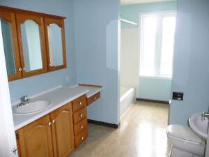 Maison à revenu à vendre 263-265, rue de la Croix, Alma Lac-Saint-Jean Saguenay-Lac-Saint-Jean image 8