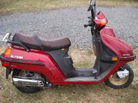 Beau scooter antique Honda Élite 1985 250 cc