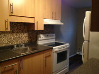 Upgraded 1 Bedroom Suites Great Locations - $599 Deposit