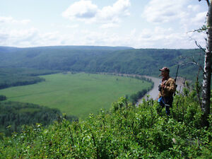 For Sale: Recreational/Grazing Land on Pine River