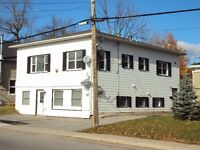 2 Apartments For Rent In A 2 Storey Duplex Building In Arnprior