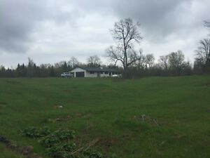 White Brick Ranch House on 5 acres for rent