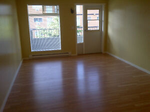 Two-Bedroom Apartment - Downtown Area