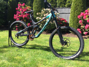 Norco Aurum Carbon Custom DH Bike