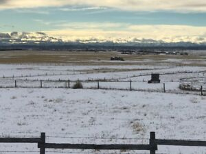 Acreage with Mountain View Inside Calgary City Limits!