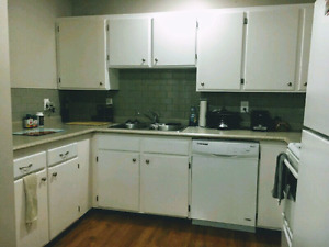 Affordable - 2 Bedroom - Renovated Townhome - Fort Sask
