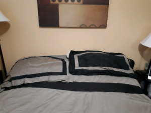 King Duvet with 4 shams.