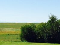 Beautiful Alberta Acreage