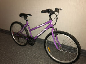 Mountain bike Supercycle 1800