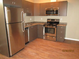 ***$800 NEW 2 Bdr Suite, 519 97th Ave (Move in November 1st)***