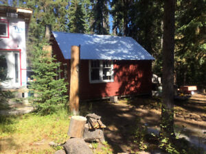 RUSTIC CABIN AND ACCESSORY BUILDING