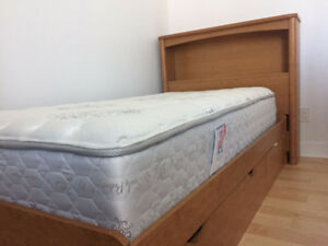 Bed Frame and Sealy Mattress