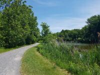 Angrignon park in Lasalle - looking for a walking/biking partner
