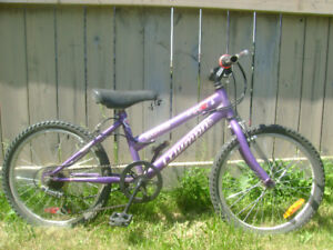 Raleigh  Mountain  bicycle for girls