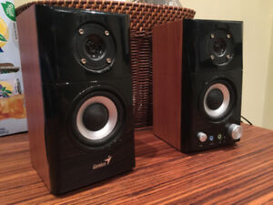Genius Hi-Fi Wood Computer Speakers (SP-HF500A)