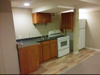 North end basement apartment for rent