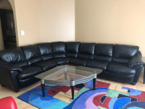 Elite Leather Sectional