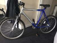 """Mountain bike - 26"""" wheels - Adult Size - No Miles... almost!"""