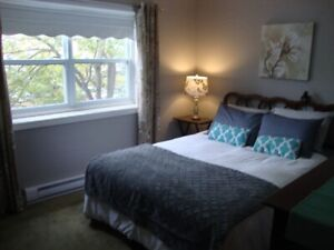FURNISHED DOWNTOWN CONDO WALKING DISTANCE TO FORTIS BLDG.