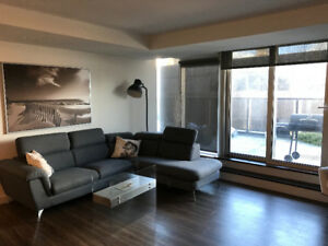 Two Month Sublet - Beautiful Downtown Unit