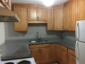 Move in New Years - Spacious 3BR Upper Suite - Jan 1