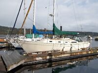 family cruiser , liveaboard , clean , cared for