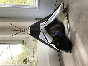 Pet Teepee For Sale