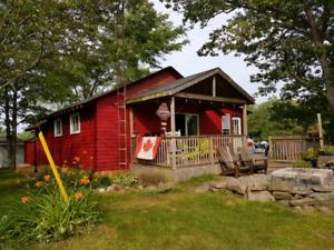 Pigeon Lake Cottage,  PontoonBoat , Seadoo Rentals