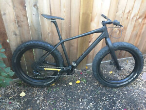 Full Carbon FatBike