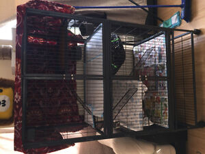 FERRET NATION TWO LEVEL CAGE FOR SALE GOOD CONDITION!