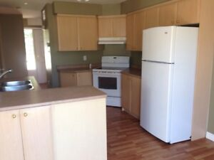 Cupboards, Countertop, Sink and Faucet