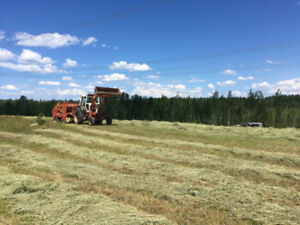 Good timothy round bales for sale