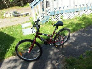 "BX bike 24 """