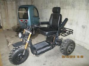 Daymak 3 wheel e bike.(The Boomerbeast)