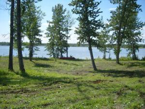 Lake Lot for sale near Darwell AB
