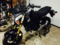 Trade mint Honda Grom plus $$ for KLR/DR650