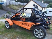 Mini based buggy track car