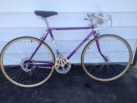Vintage 70's Apollo Road Bike