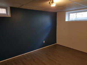 South side Whyte Ave basement for rent!