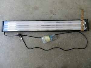 saltwater T5 HO dual lamp aquarium light