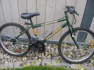 CCM Echo 15 speed mountain bike