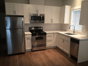 $1,375 - 2 BR Hi End Suite in New House