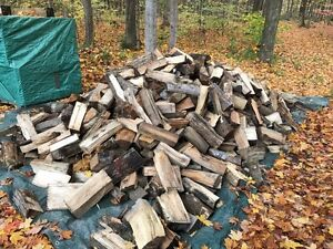 Premium Firewood for sale!