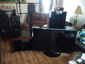47in plasma with hanging tv stand