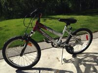 "20"" Supercycle Kids mountain bike"